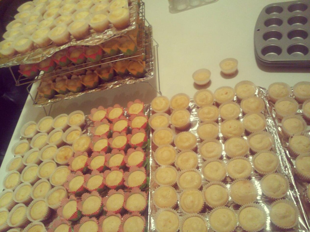 There are 225 mini cupcakes here... or 325.  Somewhere in-between that.